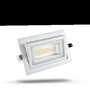 LED shoplight
